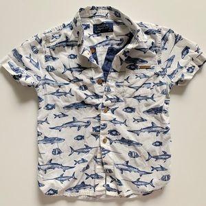 Mayoral boys shirt size 3T shark print